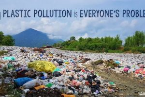 Why-Plastic-Pollution-Is-Everyones-Problem.jpg
