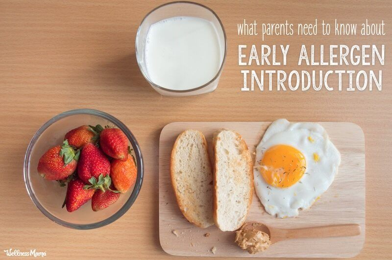 when to introduce egg dairy and peanut